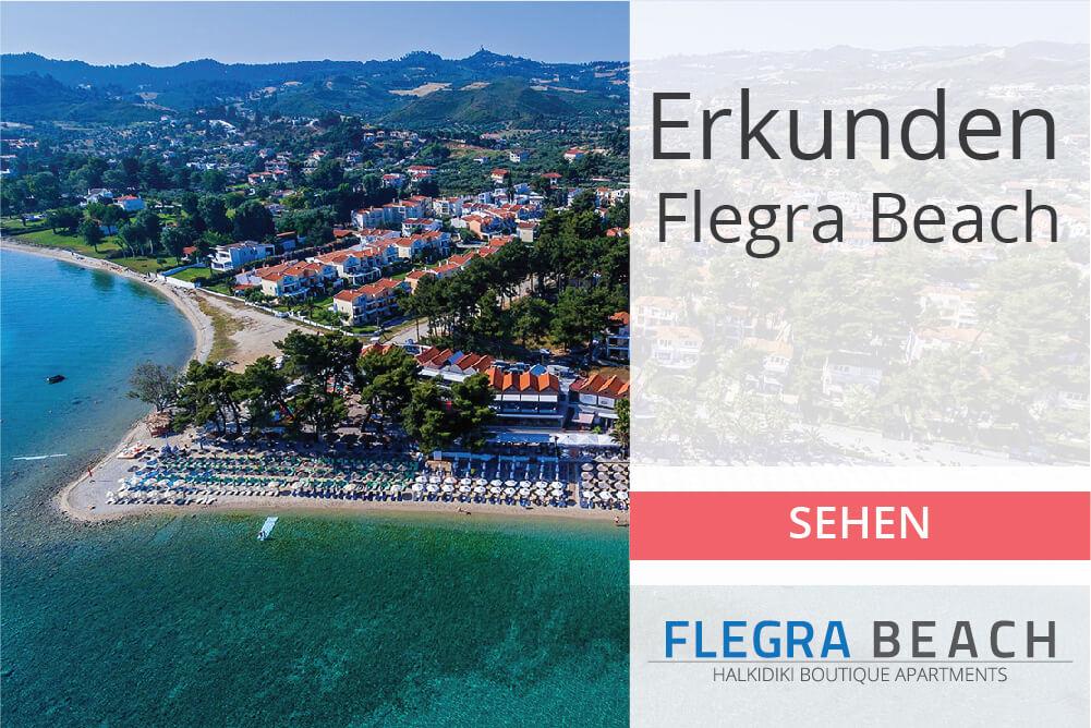 flegra-banners-homepage-03