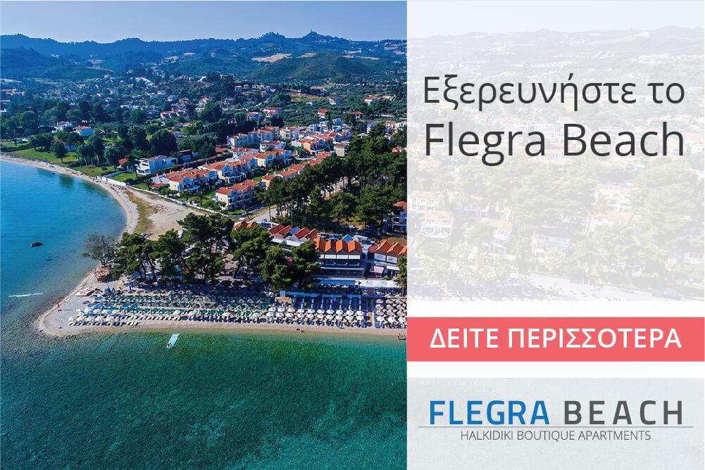 flegra-banners-homepage-07