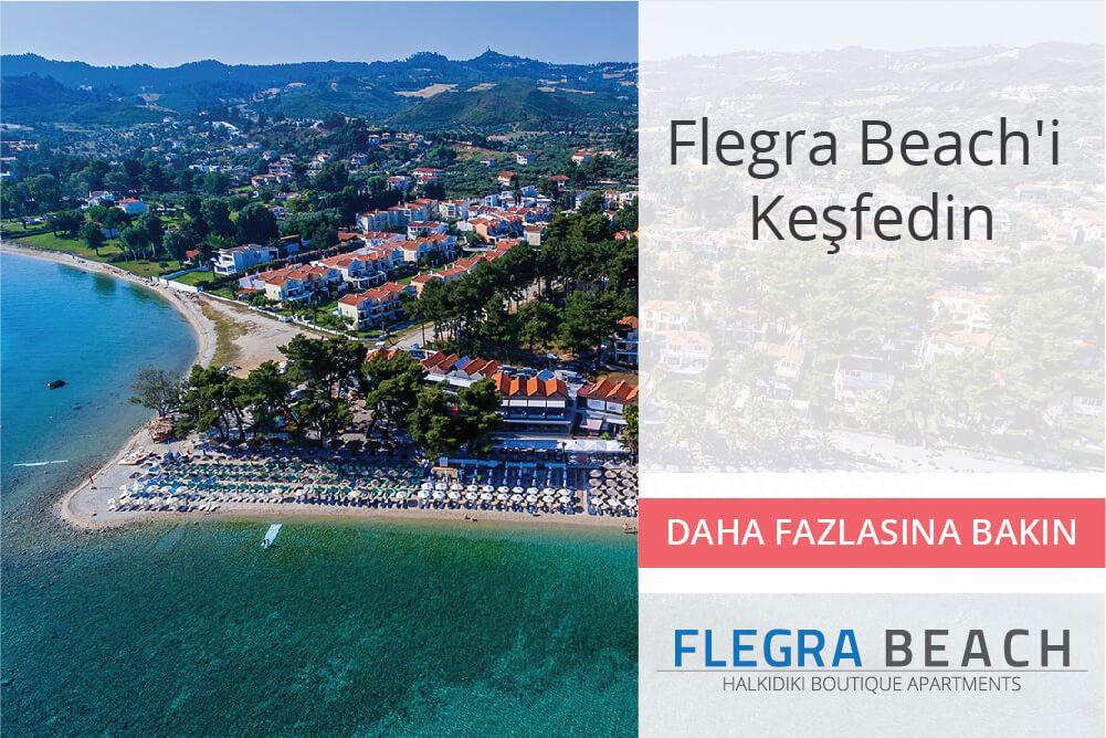flegra-banners-homepage-09