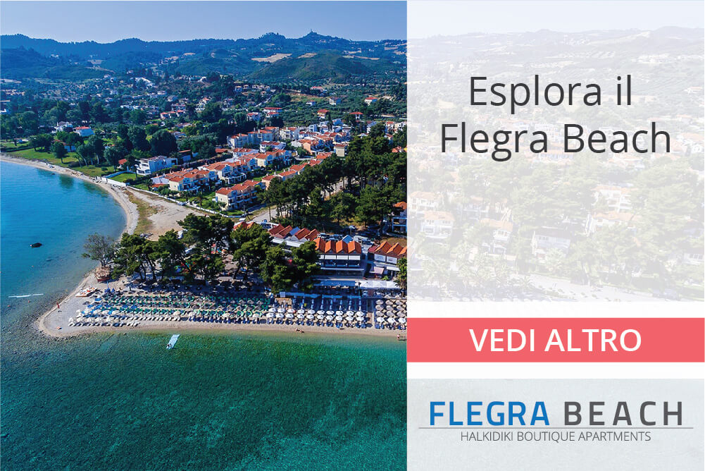 flegra-banners-homepage-11