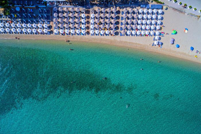 Flegra beach_229